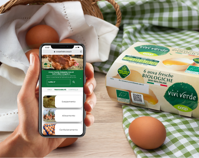 Connecting Food app